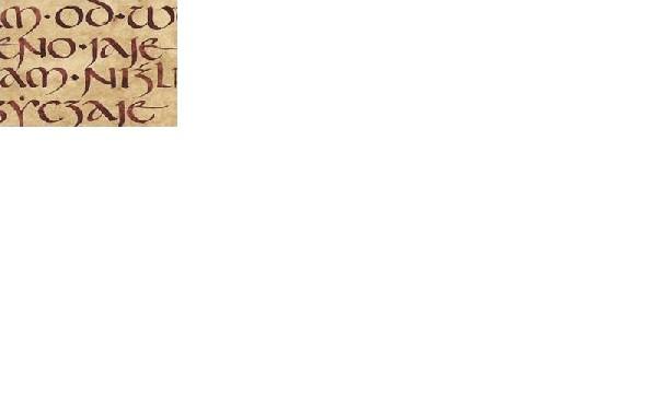 Pielgrzymi Pióra Wstęp Do Kaligrafii łacińskiej-uncjała  I  Malowanie  Inicjału 3